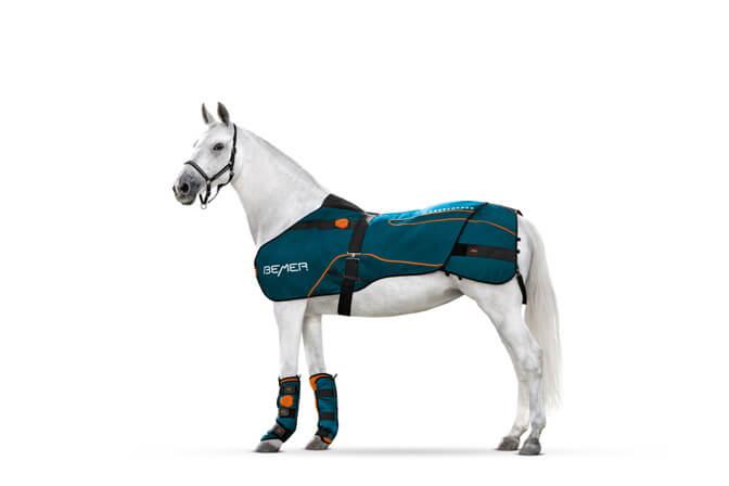 Pferd mit Bemer Decke